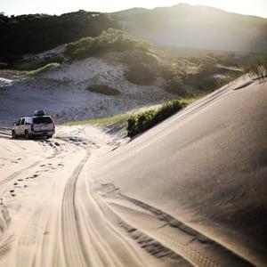 dune-tour-provincetown-women